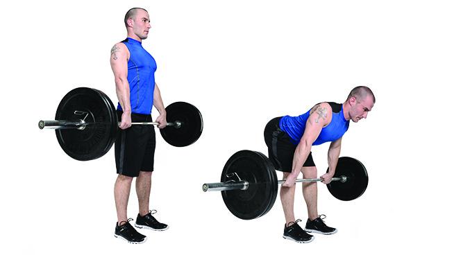 Ćwiczenia ze sztangą to jedna z najpopularniejszych form treningu siłowego.